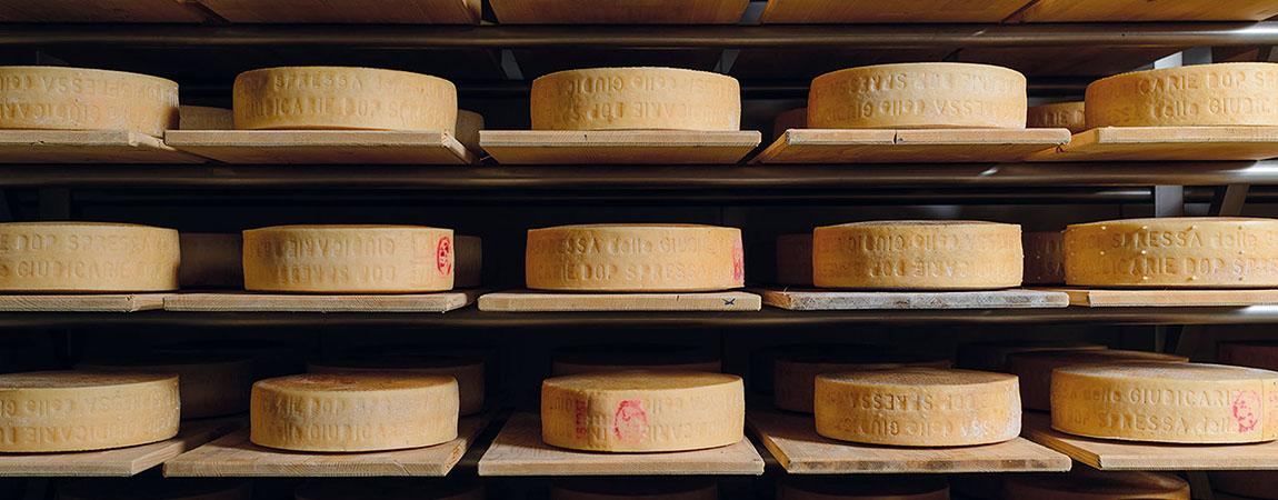 Il formaggio Spressa: dalle Valli Giudicarie a noi